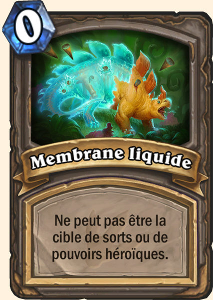 Carte adaptation Membrane liquide Hearthstone