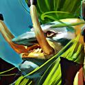 Carte Guerrier Loa Champion troll Esprit Hearthstone